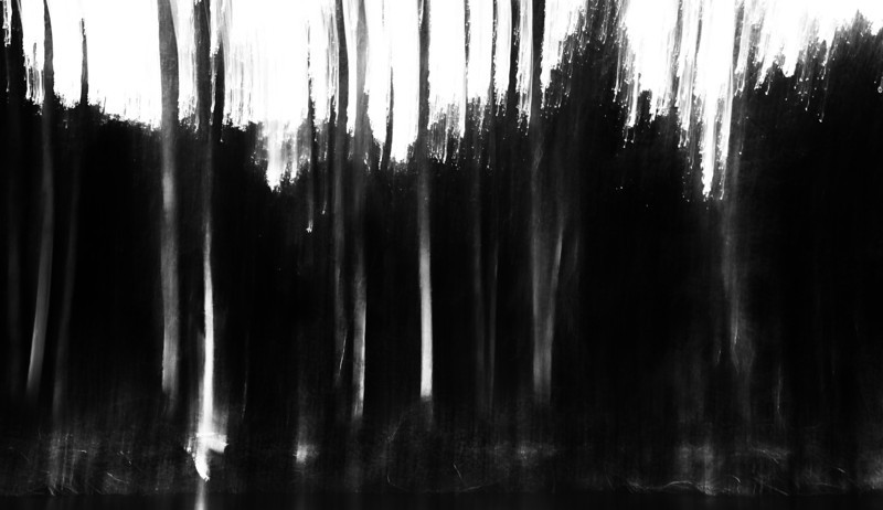 untitled-1492-2.jpg