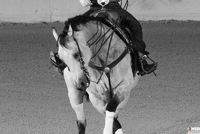 Wednesday Novice Horse Set 4 24-31