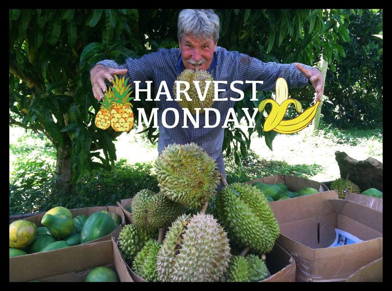 Chuck with durian.jpg