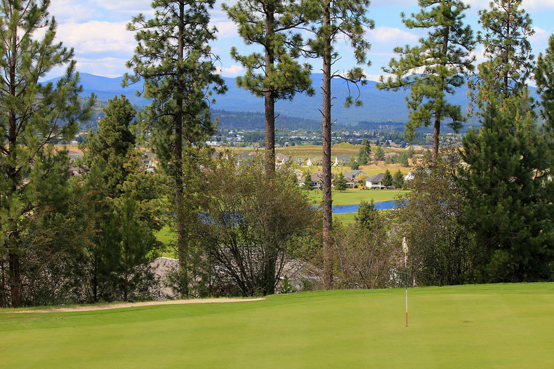 #17 Green, Medowwood GC,  Liberty lake, Wa.