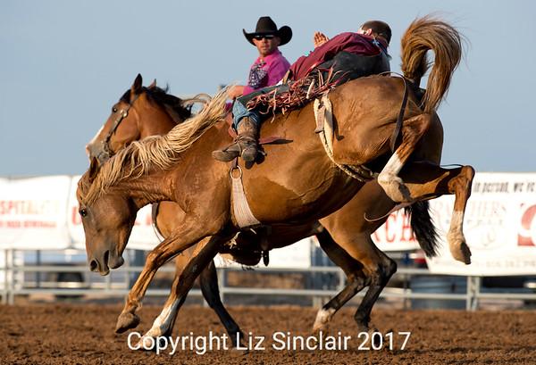 Will Rogers Range Riders 2017 Liz's