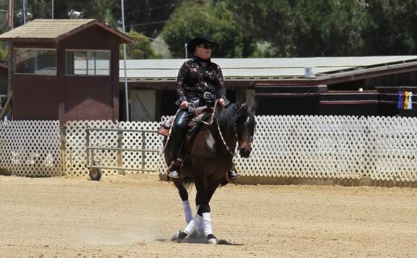 Reining Seat Equitation - AATR 19 & Over