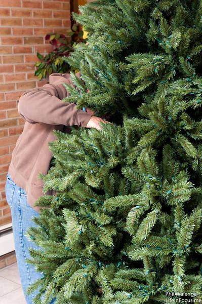 20121217 KofC Christmas Tree Setup-6262.jpg