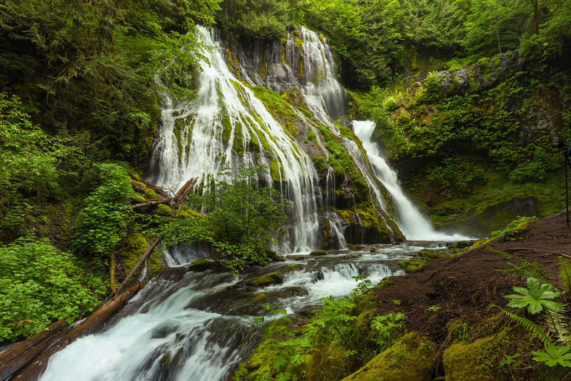 panther creek falls-2.jpg