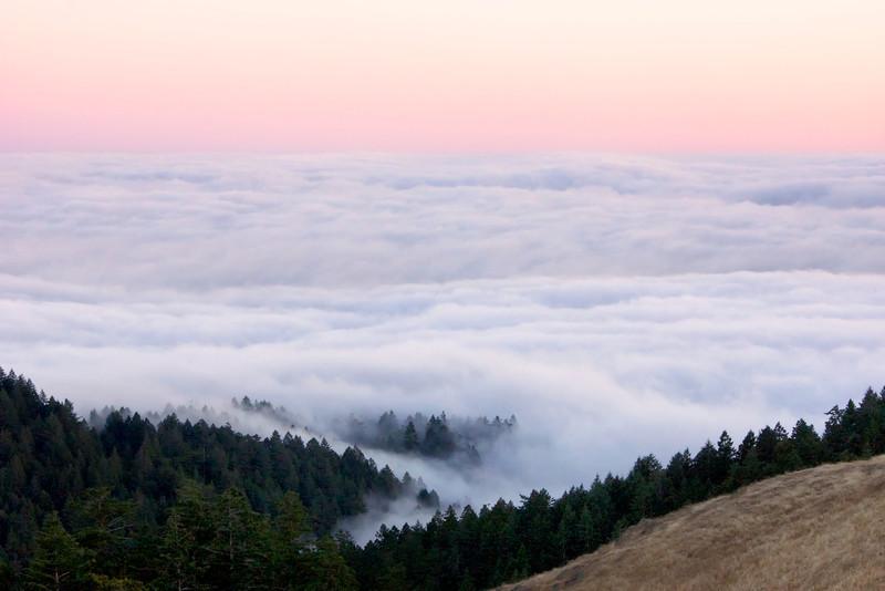 Above the clouds Mt. Tamalpais ref: c9c0158d-4912-4ebb-a5d6-a2482447987c