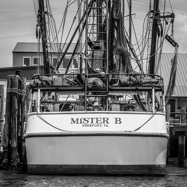 Beaufort-Hesters-Summer-2214.jpg