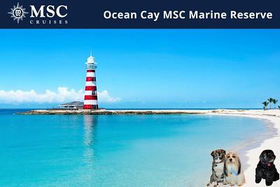 MSC Cruises Virtual Photo Booth