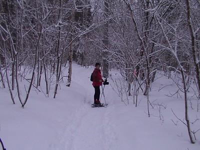 Charlevoix février 2005