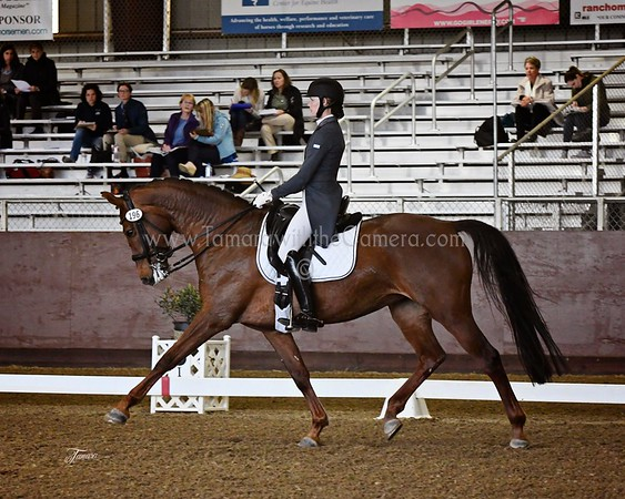 Golden State Dressage March Mania  March 17-19, 2017