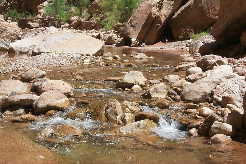 Kanab Creek   (Jun 07, 1999, 11:57am)