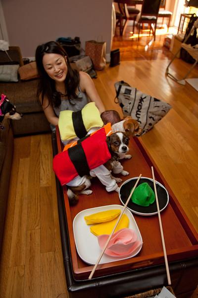Dog-sushi-halloween-65.jpg