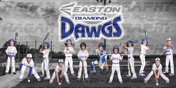2016 Diamond Dawgs 7u Team Photos and Banner