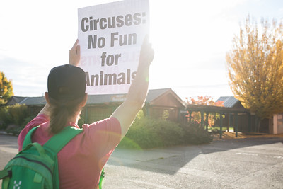 Corvallis Circus Peaceful Protest