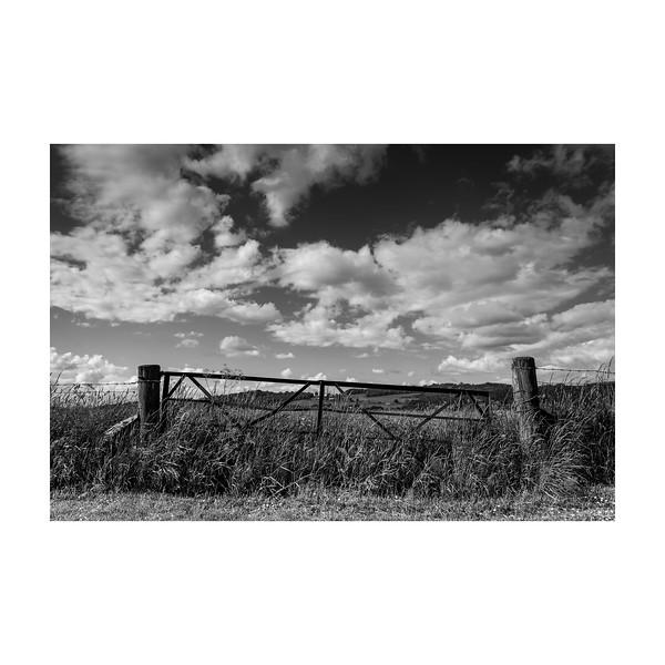 153_Gate_10x10.jpg