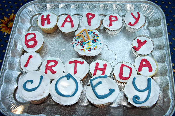 Joey's 1st Birthday