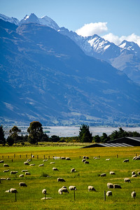 Lake Wakatipu 06