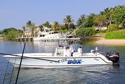 2011 Pompano Beach Saltwater Shootout - Afternoon Express Weigh-In