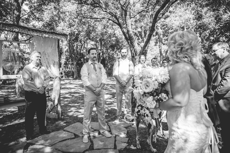 2014 09 14 Waddle Wedding-214.jpg