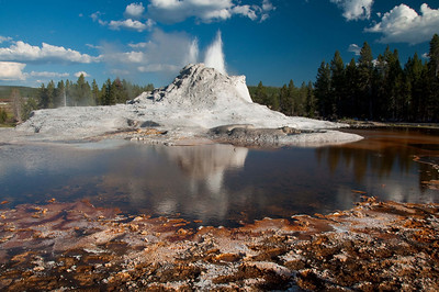 Trips to Yellowstone and Glacier