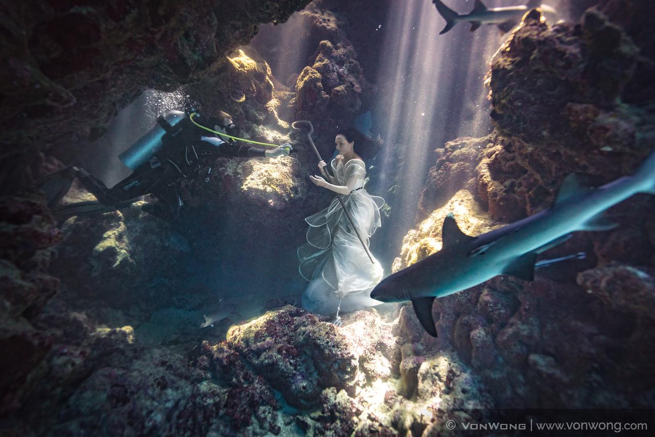 How it was done - Shark Shepherd