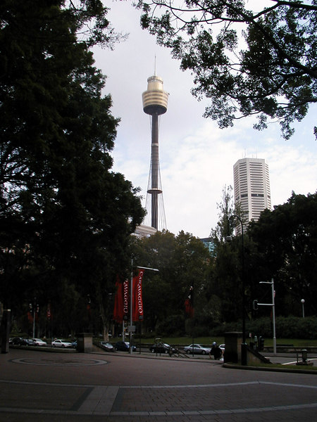 Sydney Tower from Hyde Park