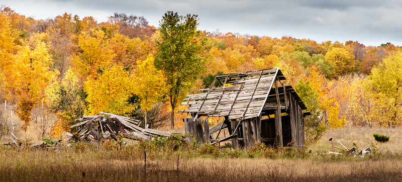 Abandonded Farm, Northern MI