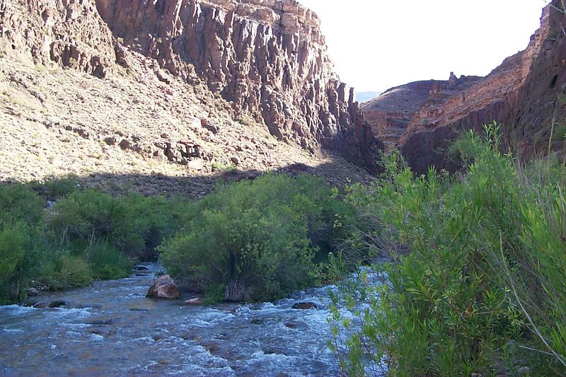 Tapeats Creek   (Jun 06, 1999, 09:04am)