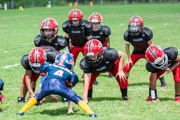 Junior Falcons 2014
