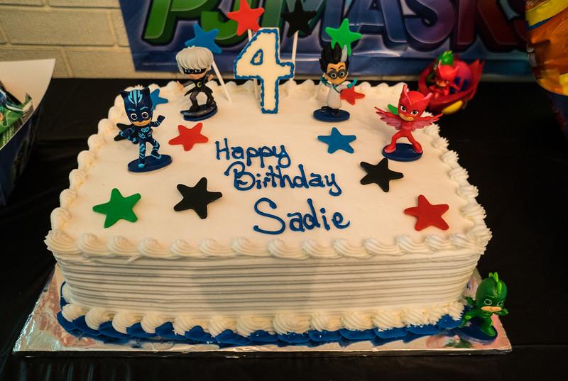 SADIES 4th Birthday_ (1 of 148).JPG
