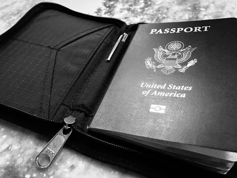 zero grid passport holder
