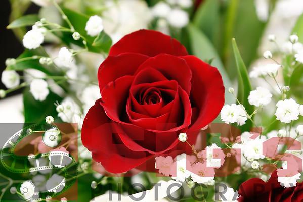05-20-16 Rose Breakfast
