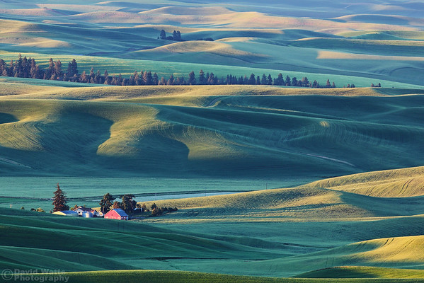 The Palouse Region 2015 - Muench Workshops