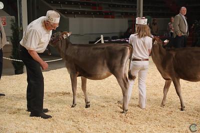 Calgary Dairy Classic Jersey 2017