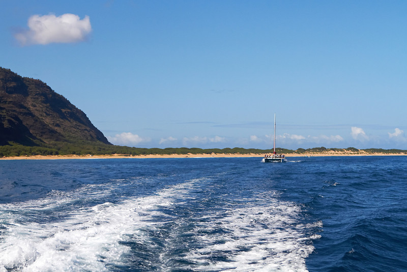 Hawaii837.jpg
