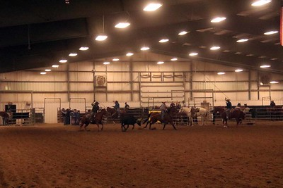 Team Roping Red & White