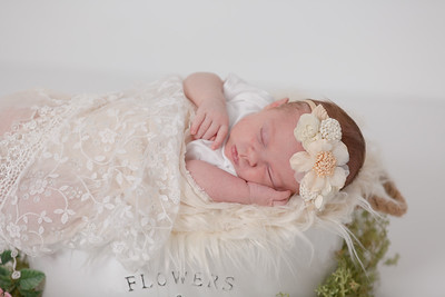 Claire Haska Newborn Baby Studio Family Portraits Nature Natural Happy Candid Mom Dad Husband Wife Love Daughter Pretty Enfield Ct Conn Connecticut Suffield Agawam Ma Mass Massachusetts Westfield Mill Crane Pond Baby Photos Professional Photographer Near