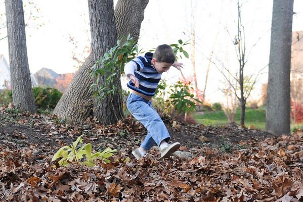 Leaves November 2009