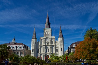 New Orleans 501