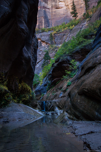 The Narrows, Zion National Park Utah