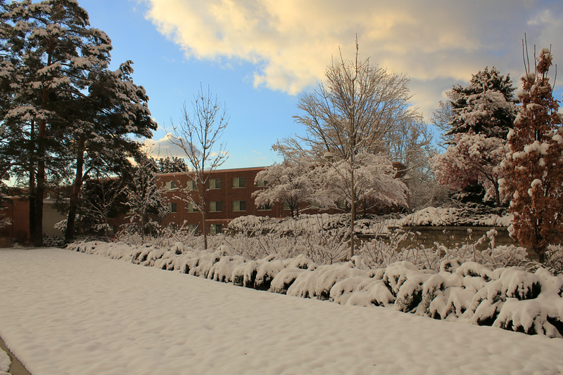 Winter_Scenery_12_19_2012_4097.JPG