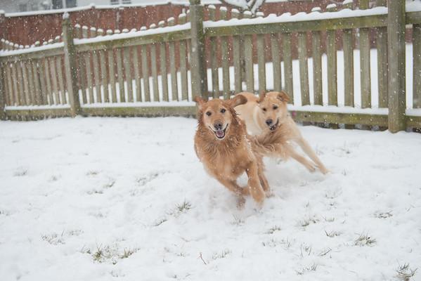 January Snow Day