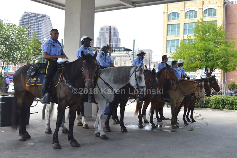 NOPD Mounted Patrol