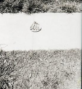 010 J - Fontana 1953