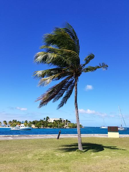 St. Croix (15).jpg