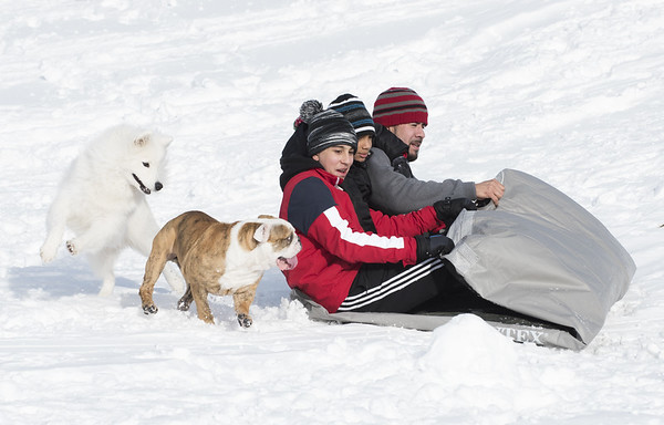 sledding-nb-120419-5