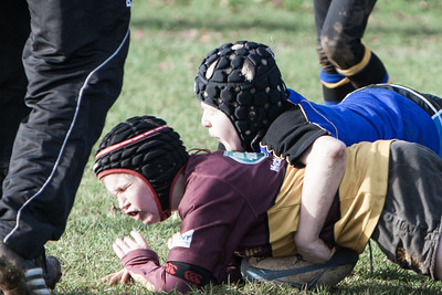 Hertford RFC vs Ampthill RFC
