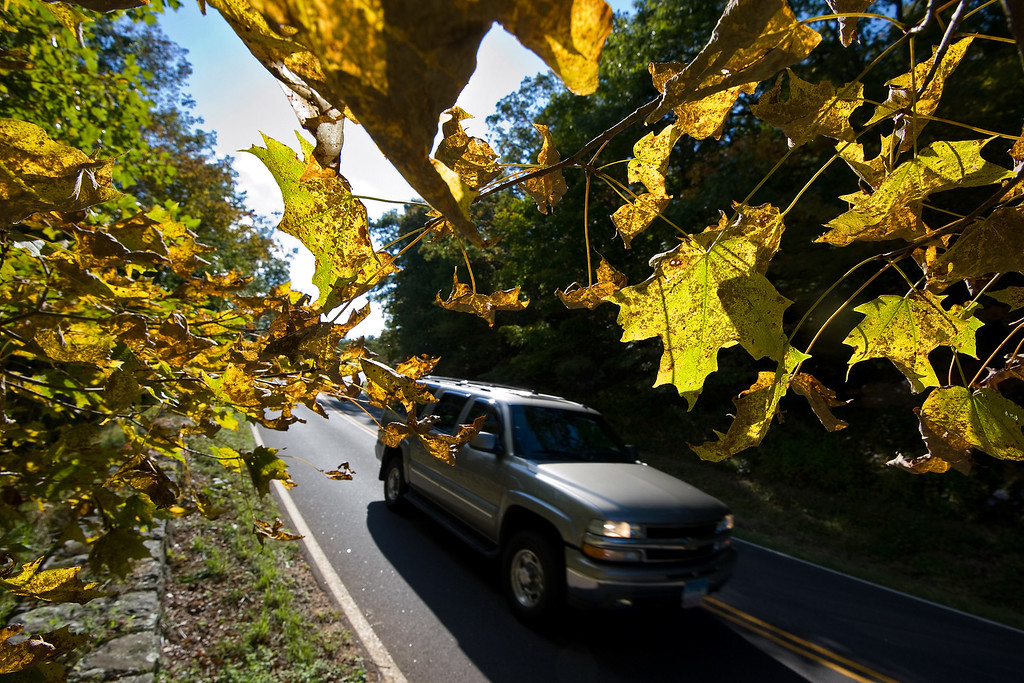 . A vehicle drives by a maple tree, which is beginning to change colors, on Skyline Drive in Shenandoah National Park near Elkton, Va., on Monday, Sept. 30, 2013. Shenandoah National Park  will close if parts of the government shut Tuesday because of the budget impasse in Congress.  (AP Photo/The Daily News-Record, Nikki Fox)