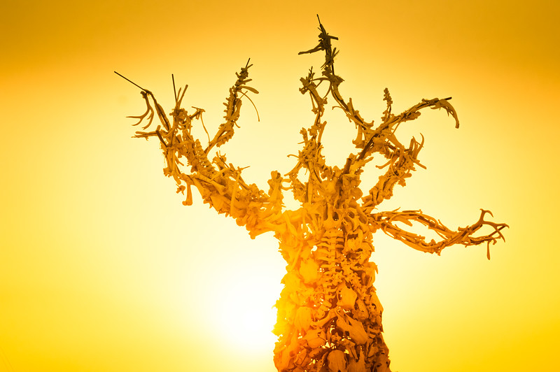 old-bones-tree-burning-man-2013.jpg
