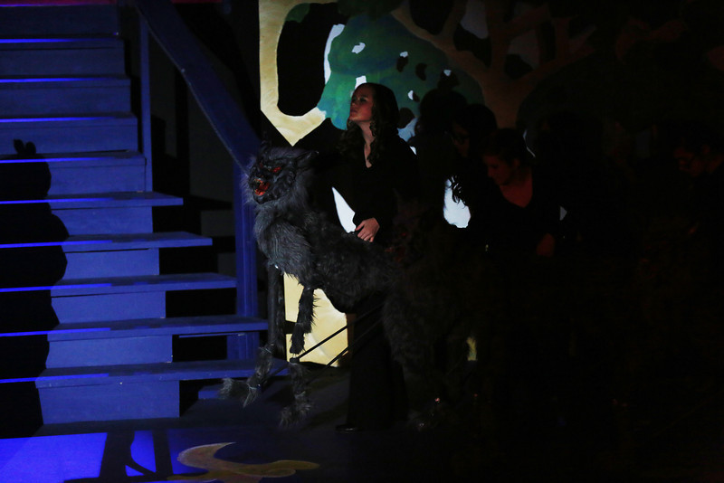 Debbie Markham Photo-Closing Performance-Beauty and the Beast-CUHS 2013-224.jpg