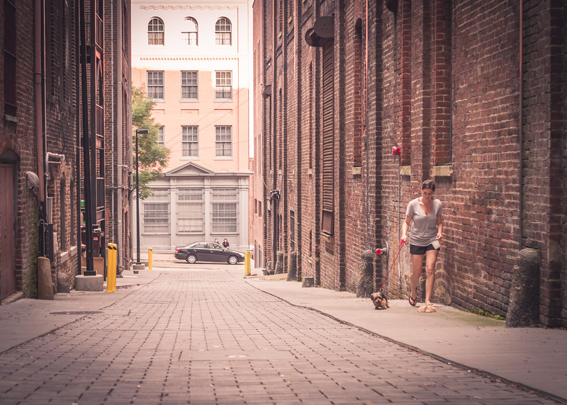 Alley-7832.jpg